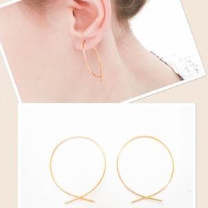 🖤firm🖤 925/14k fish Inverted Hoop earrings